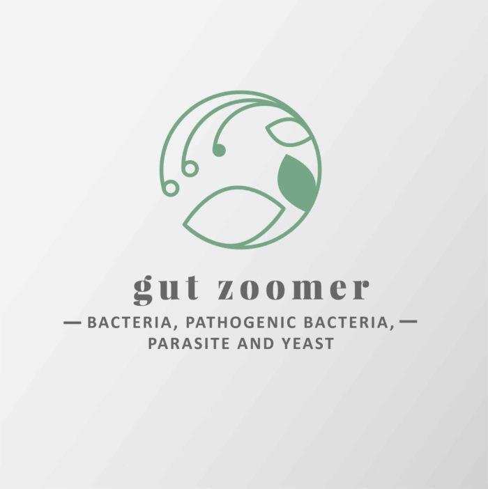 Gut Zoomer