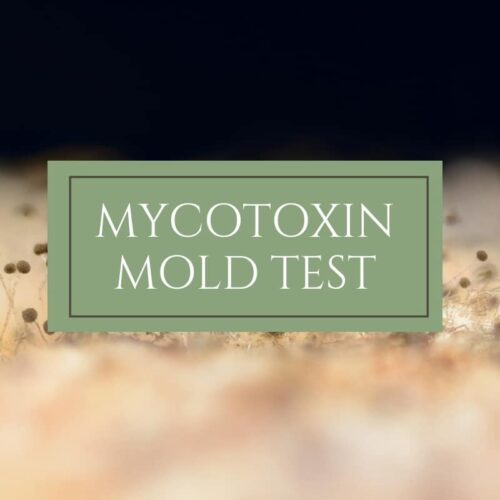 Mycotoxyn Mold Test - Dr. Mindy Pelz | Reset your Health | Nutrition Health Coach