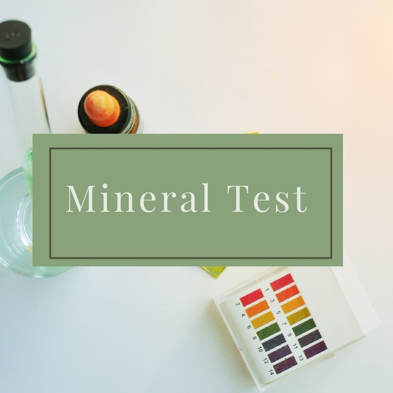 Mineral Testing - Dr. Mindy Pelz | Reset your Health | Nutrition Health Coach