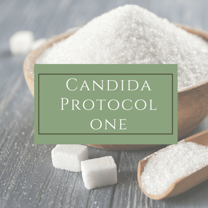 Candida Protocol #1 - Dr. Mindy Pelz | Reset your Health | Nutrition Health Coach