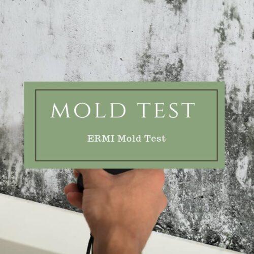 ERMI Mold Test - Dr. Mindy Pelz | Reset your Health | Nutrition Health Coach