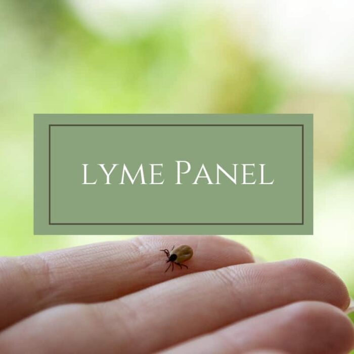 Lyme Panel - Dr. Mindy Pelz | Reset your Health | Nutrition Health Coach