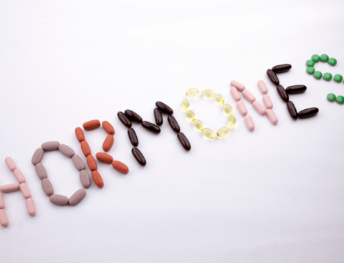 Balancing your Hormones: The Hormonal Hierarchy