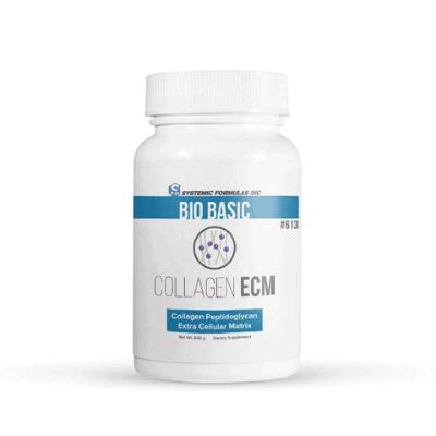 collagen ECM